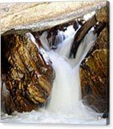 Spun Silk - Sequoia National Park Acrylic Print