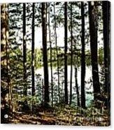 Square North Woods Lake Acrylic Print