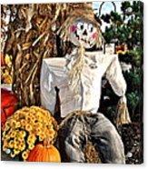 Square Scarecrow Acrylic Print