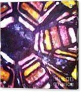 Squash Blossom 007 Acrylic Print