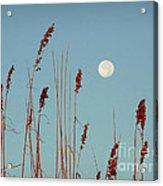 St. Augustine Beach Moonrise Acrylic Print