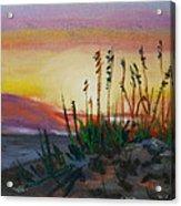 Beach At Sunrise Acrylic Print