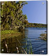 St Johns River Florida Acrylic Print
