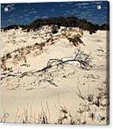 St. Joseph Sand Dunes Acrylic Print by Adam Jewell