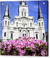 St. Louis Cathedral And Flowers In New Orleans Acrylic Print by Paul Velgos