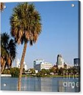 St Petersburg Florida From Mirror Lake Park Acrylic Print
