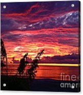 St. Petersburg Sunset Acrylic Print