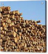 Stacks Of Logs Acrylic Print