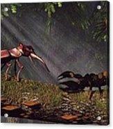 Stag Beetle Versus Scorpion Acrylic Print