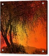 Stained By The Sunset Acrylic Print