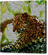 Stained Glass Leopard 2 Acrylic Print