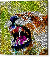 Stained Glass Leopard 3 Acrylic Print