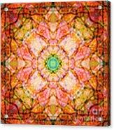 Stained Glass Mandala Acrylic Print