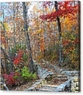 Staircase To Fall Acrylic Print