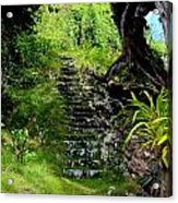 Stairway Through The Forest Acrylic Print