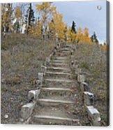 Stairway To Autumn Acrylic Print