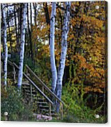 Stairway To Fall Acrylic Print by Kathy DesJardins