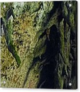 Stalactite Diversity At The Camuy Cave System Acrylic Print by Sandra Pena de Ortiz