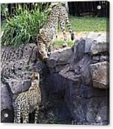 Stand Off Acrylic Print