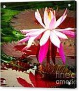 Standing Beauty Acrylic Print