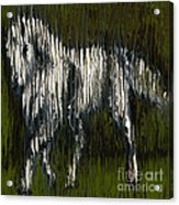 Standing Horse Profile Acrylic Print