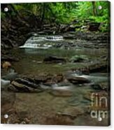Standing In The Stream Acrylic Print