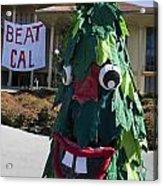 Stanford Tree Mascot Beat Cal Acrylic Print