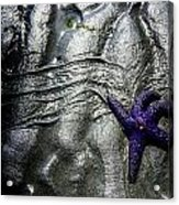 Star Dance Acrylic Print