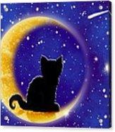 Star Gazing Cat Acrylic Print