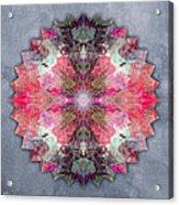 Star Mandala B Acrylic Print