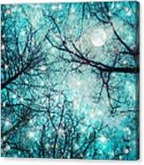 Star Night Acrylic Print by William Schmid