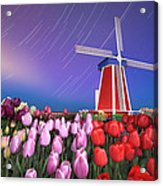 Star Trails Windmill And Tulips Acrylic Print
