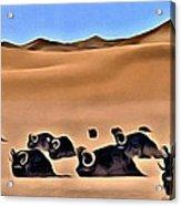 Star Wars Desert Animals Acrylic Print