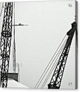 Stare Contest IIi Acrylic Print