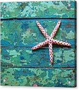 Seashore Peeling Paint - Starfish And Turquoise Acrylic Print
