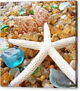 Starfish Art Prints Shells Agates Coastal Beach Acrylic Print by Baslee Troutman