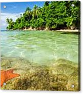 Starfish In Clear Water Acrylic Print