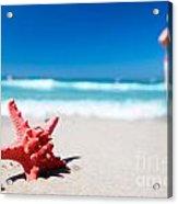 Starfish On Tropical Beach Acrylic Print