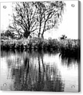 Stark Reflections Acrylic Print