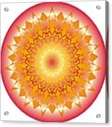 Starlace Acrylic Print