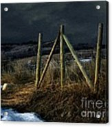 Starless Canadian Sky Acrylic Print