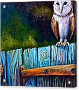 Starry Barn Owl Acrylic Print