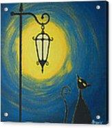 Starry Cat Night Acrylic Print