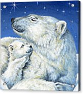 Starry Night Bears Acrylic Print by Richard De Wolfe