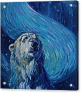 Starry Night Van Gogh Bear Acrylic Print