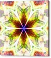 Starseed Rainbow Acrylic Print