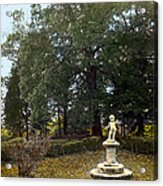 Statue And Tree Acrylic Print