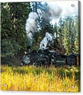 Steam Train 2 Acrylic Print