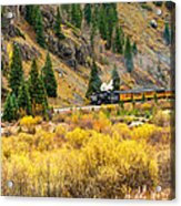 Steam Train 5 Acrylic Print