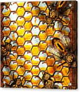 Steampunk - Apiary - The Hive Acrylic Print